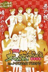 Naruto Shippuden นารูโตะ ซีซั่น 25.3 วันสุดวิเศษสำหรับการแต่งงาน 494-500